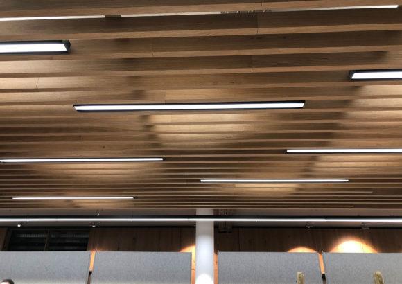 iMexx Swing LED Pendelleuchte - Empfangsbereich
